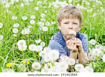 Cute young boy blowing a dandelion in a meadow