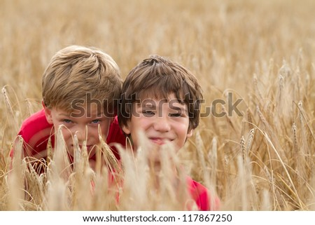 Cute young children in a wheat field - stock photo