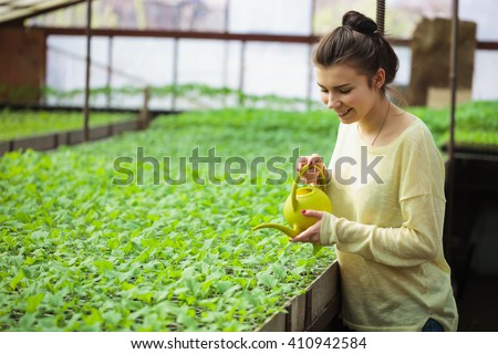 Cute young farmer girl waters rows of green plant seedlings in greenhouse with a watering can. Cultivated sprouts in rich soil were grown under the sun in glasshouse, macro close up  - stock photo