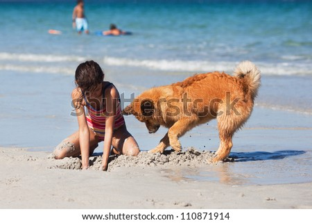 cute young girl and her Elo puppy dig together a hole in the sand of the beach - stock photo