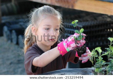 Cute young girl transplanting seedlings for a community service project. Intent on her work. Learning gardening skills. - stock photo