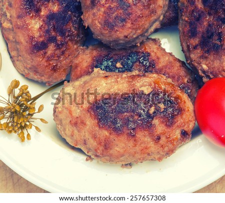 Cutlets meat - stock photo