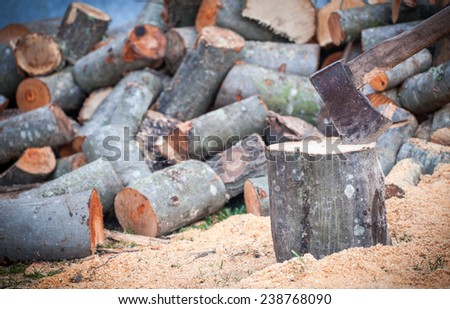 cutting and storing firewood for the winter - stock photo