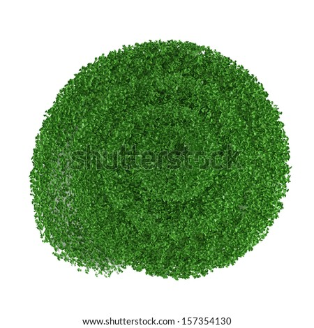 cutting bush in the form of a spiral top  - stock photo