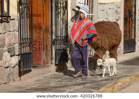 CUZCO, PERU - NOVEMBER 27 2011 - Peruvian boy walking with family of lamas on the street of Cuzco Peru - stock photo