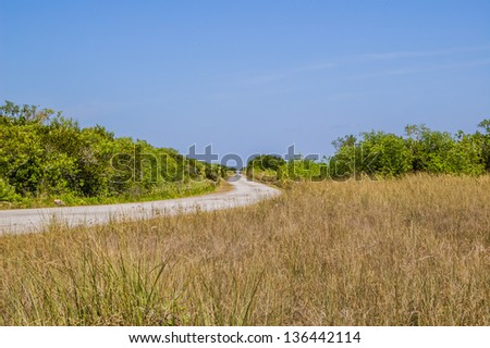Cycle Path Through Marshland in Everglades National Park During the Dry Season - stock photo