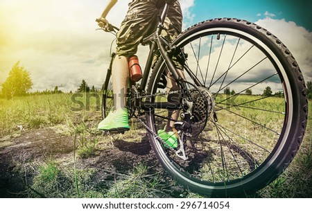 cyclist on a Mountain Bike on a forest track. photographed on a fisheye lens. focus on the rear wheel. Toned image - stock photo