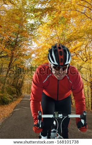 Cyclist on road bike through a forest. - stock photo