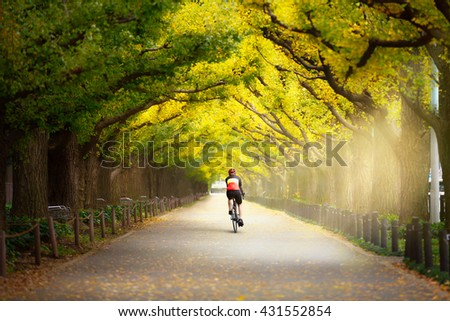 Cyclist on the beautiful gingko trees at the street of Gingko trees, Tokyo Japan, Cyclist ride the bike exercise on nature concept