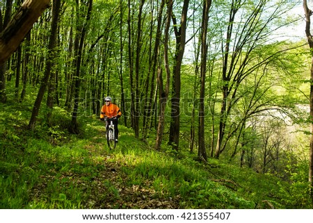 Cyclist Riding the Bike on a Trail in Summer Forest