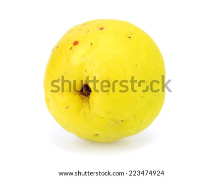 Cydonia or japanese quince fruit on a white background