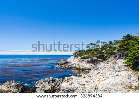Cypress Point, 17 Mile Drive, Big Sur, California, USA - July 1, 2012: The 17 Mile Drive is a scenic roadthrough Pacific Grove and Pebble Beach in Big Sur, Monterey, California, USA. - stock photo