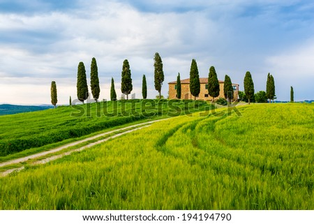 Cypress trees and meadow with typical tuscan house, Val d'Orcia, Italy - Tuscany - stock photo