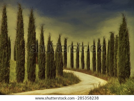Cypress Trees Lining a Driveway in Tuscany, Italy - stock photo