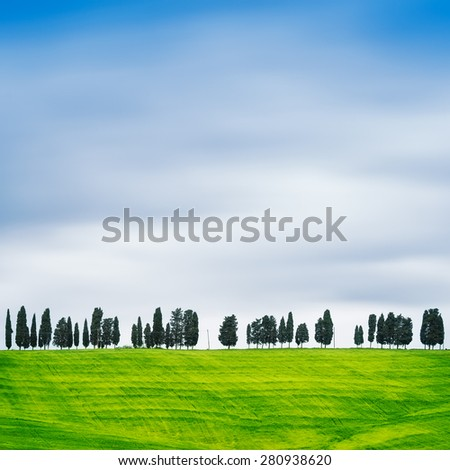 Cypress Trees rows on hill top, rural landscape in Chianti land near Florence. Tuscany, Italy, Europe. Long Exposure - stock photo