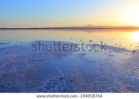 Cyprus - Larnaca salt lake. Ground covered in white salt.