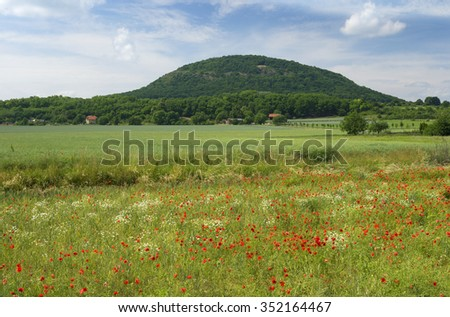Czech countryside with Rip Mountain (Hora Rip), fields and meadows with wild red poppies