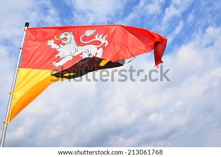 Czech lion flag - stock photo
