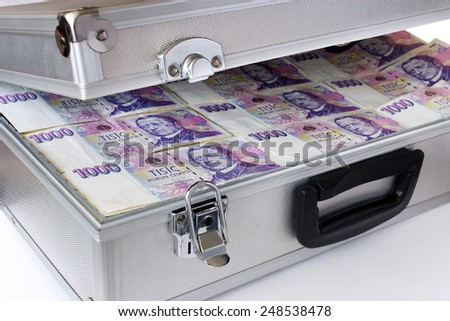 Czech money - banknotes in a case - economy and finance - stock photo