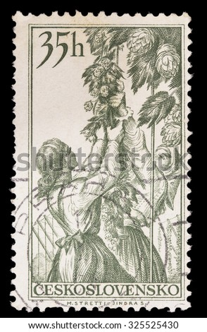 CZECHOSLOVAKIA - CIRCA 1956: A postage stamp printed in Czechoslovakia shows hop plukkers, a base ingredient for brewing beer, circa 1956 - stock photo
