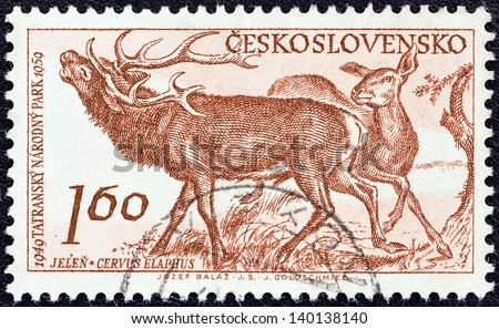 """CZECHOSLOVAKIA - CIRCA 1959: A stamp printed in Czechoslovakia from the """"10th anniversary of Tatra National Park"""" issue shows  Red deers (Cervus elaphus), circa 1959. - stock photo"""