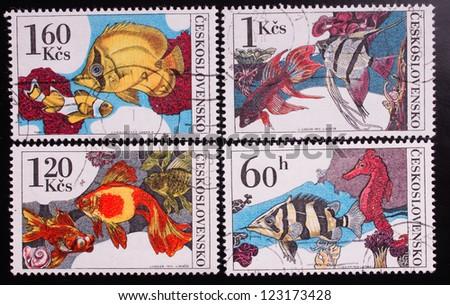 Czechoslovakia - CIRCA 1975: A stamp printed in Czechoslovakia shows four kinds of sea fish , circa 1975. - stock photo