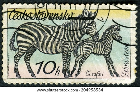 "CZECHOSLOVAKIA - CIRCA 1976: A Stamp printed in CZECHOSLOVAKIA shows the image of the Zebras from the series ""African animals"", circa 1976 - stock photo"
