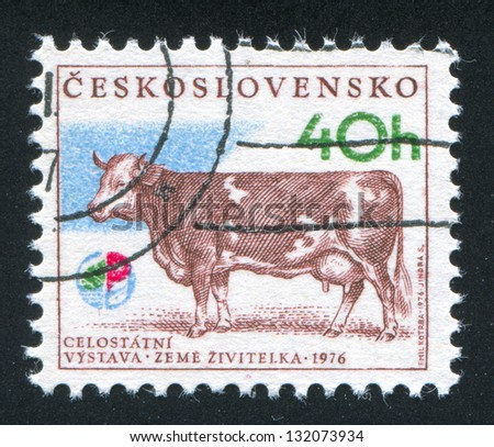 CZECHOSLOVAKIA - CIRCA 1976: stamp printed by Czechoslovakia, shows Bern-Hana milk cow, circa 1976