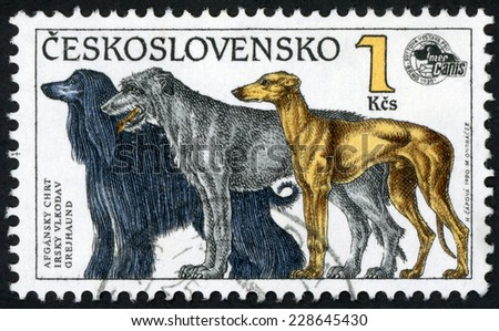 CZECHOSLOVAKIA - CIRCA 1990: stamp printed in Czech (Ceskoslovensko) shows illustration of three standing dogs Afghan hound, Irish wolfhound, greyhound; Intercanis dog show; Scott 2797 1k, circa 1990 - stock photo