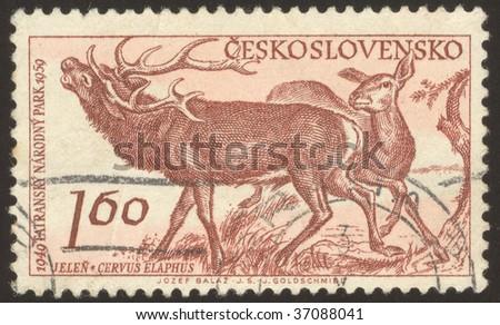 CZECHOSLOVAKIA - CIRCA 1959: The Tatra Mountains, constitute a mountain range which forms a natural border between Slovakia and Poland, circa 1959 - stock photo