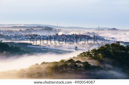 DA LAT, VIETNAM, Sep 17, 2016: pine forest, highland Da Lat city fog in the morning