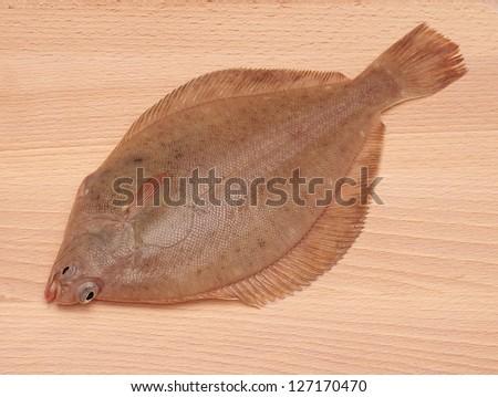 Dab Fish (Limanda limanda)on Wooden Board Background - stock photo