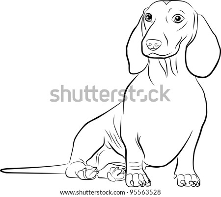 dachshund silhouette on a white background - freehand - stock photo