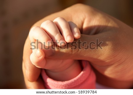 daddy's big tanned palm holds his little daughter's hand