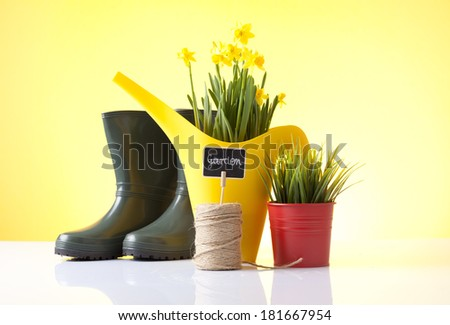 daffodil flowers and garden equipment - stock photo