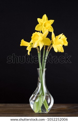 Daffodil Glass Vase On Wooden Table Stock Photo Royalty Free