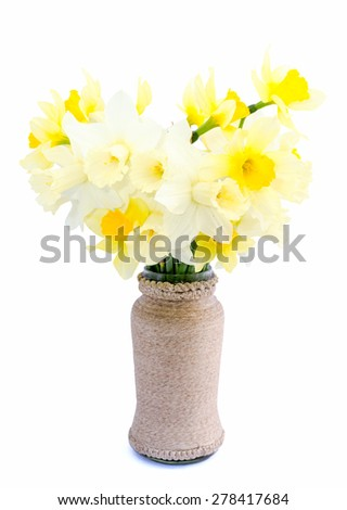 Daffodil yellow and white flower or narcissus bouquet isolated on white background cutout isolated on white - stock photo