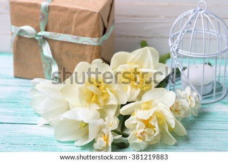 Daffodils flowers, candle and gift box on turquoise painted wooden planks against white wall. Selective focus is on flowers.
