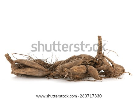Dahlia tubers isolated over white background