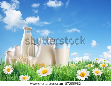 Dairy produce on the grass with chamomiles. On a background of the summer sky with clouds. - stock photo