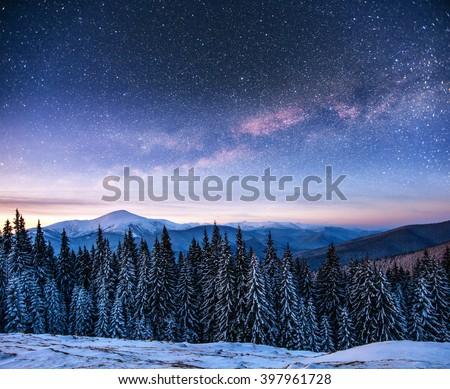 Dairy Star Trek in the winter woods. Dramatic and picturesque scene. Carpathian, Ukraine, Europe. - stock photo