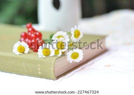 Daisies and red currants on top of book