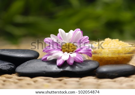 daisies flower with green plant and salt in bowl on wicker mat