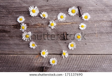 daisies flowers heart shape on wooden table - stock photo