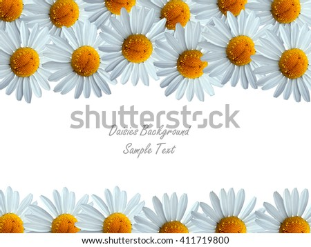 Daisies Frame.Color Spring Image with Daisy Flowers in Bloom and Place for Your Text.