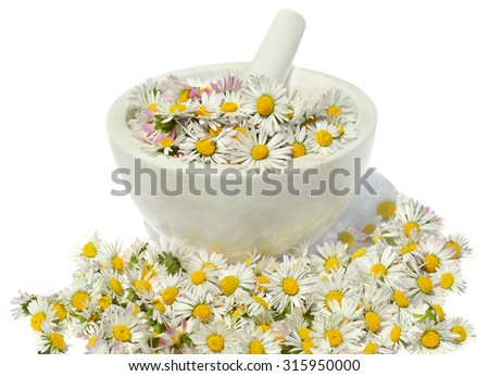 Daisies in a mortar - stock photo