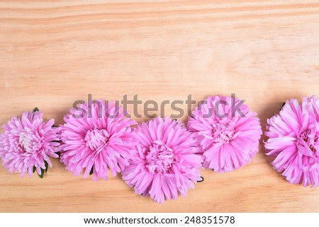 Daisy camomile flowers on wooden table background - stock photo