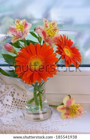 Daisy flower gerbera bouquet - stock photo