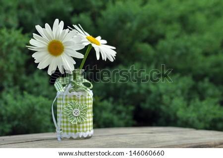 Daisy flower in vase - stock photo