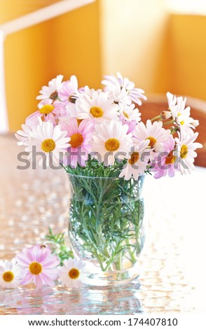 Daisy flowers in a glass vase on the table on a sunny day - stock photo